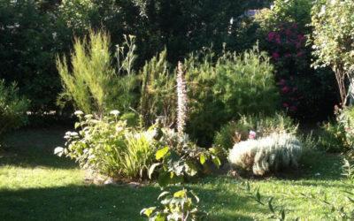 La forêt-jardin gagne du terrain