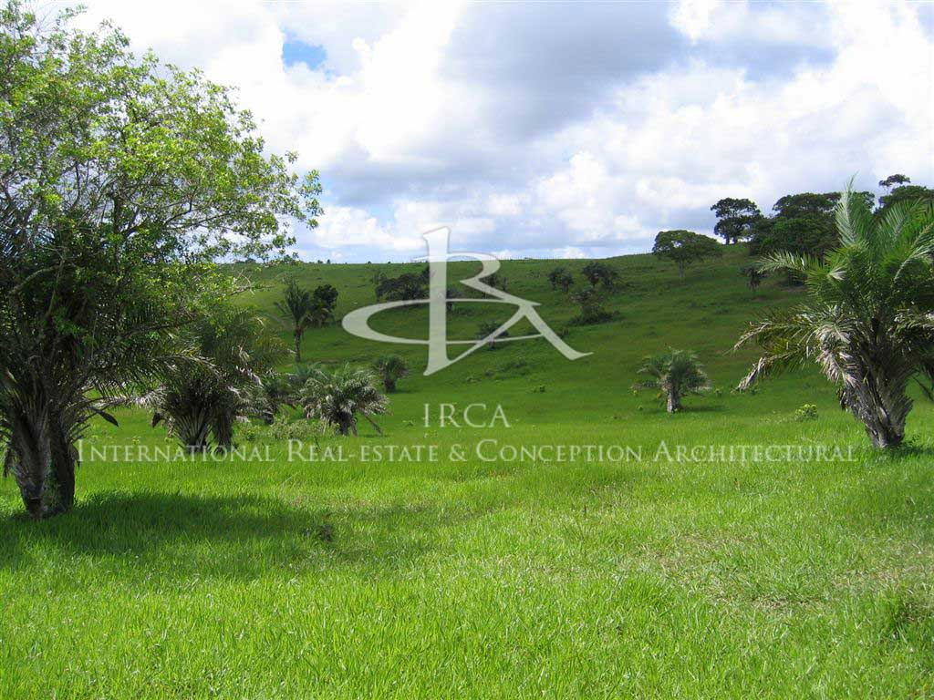 Domaine de 1.700 hectares…