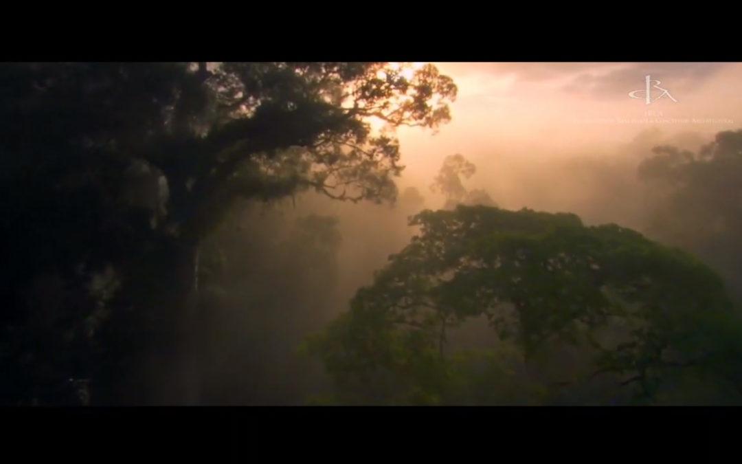 Harmonisation Globale des Espaces de Vie (Le Film)